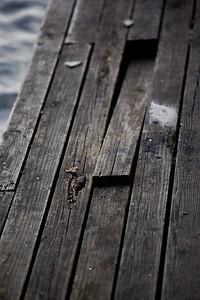 _MG_9316~-(Houseboat_fire)
