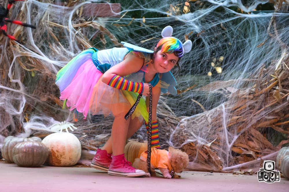 © Jason Koerner Photography Find me at www.jasonkoerner.com and Reach me at jkoernerphotography@me.com