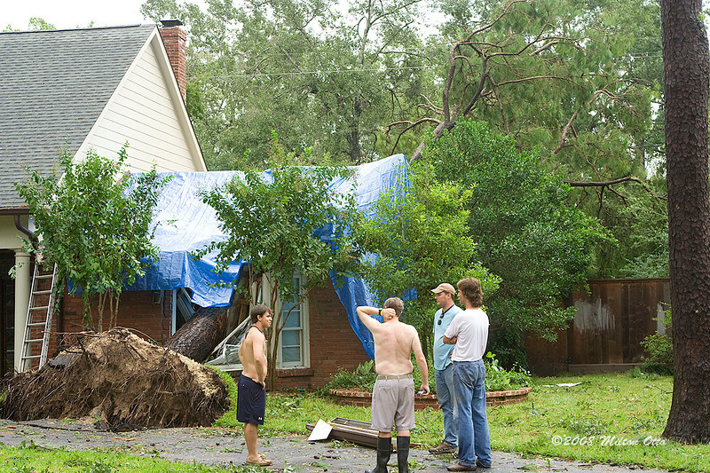 The home owner is scratching his head. The story went that this guy's mother fled the coast to ride out the storm with her son (hand behind his head) in Houston. During the night a tree crashed thru her bedroom, landing at the foot of the bed.