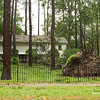 "The gentleman that lived here confronted me for taking a picture of his house. ""Why don't you take a picture of yo' own house,"" he kept asking? ""I did that already,"" I explained. Guess he was pissed at himself for leaving his SUV out in a hurricane. Yep, it got clobbered by this tree but I was unable to get any more photos."