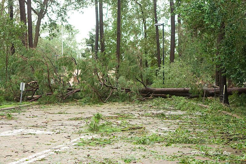 Kinkade School road, Hurricane Ike aftermath.