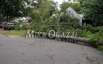 8/28/2011 Mike Orazzi | Staff A large tree blockign Highview Street in Bristol where it intersects with Garfield Road after Hurricane Irene passed through Central Connecticut Saturday into Sunday.