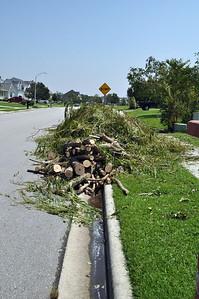 Hurricane Irene124