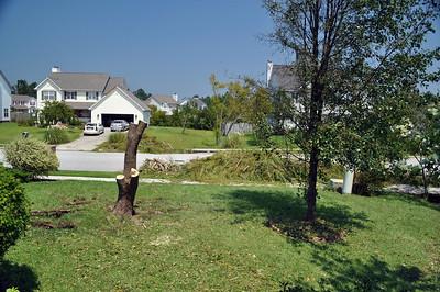 Hurricane Irene115