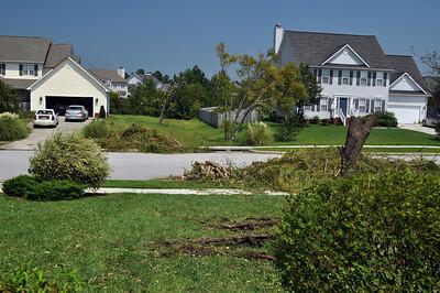 Hurricane Irene113