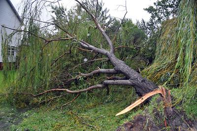 Hurricane Irene049