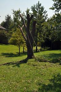 Hurricane Irene156
