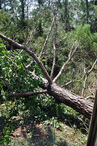 Hurricane Irene139