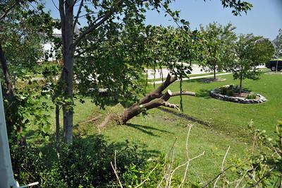 Hurricane Irene116
