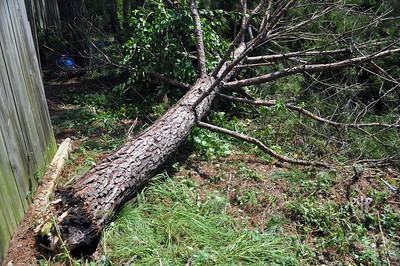 Hurricane Irene142