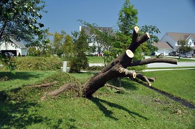 Hurricane Irene121