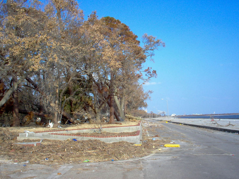 Looking east from the park. The road didn't get as ripped up as it usually does in a hurricane, it just went right over the road and ripped up all of the houses. Pascagoula got slapped hard this time. It was like no hurricane I have ever experienced. 9/6/05
