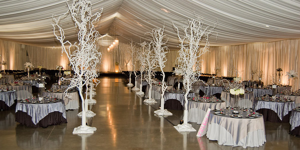 I-Beam Albany Wedding Set #1   1-21-12 (1118 of 37)