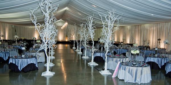 I-Beam Albany Wedding Set #1   1-21-12 (1119 of 37)
