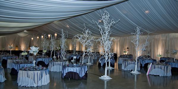 I-Beam Albany Wedding Set #1   1-21-12 (1126 of 37)