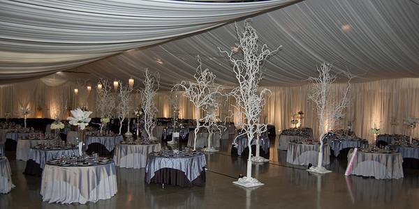 I-Beam Albany Wedding Set #1   1-21-12 (1125 of 37)