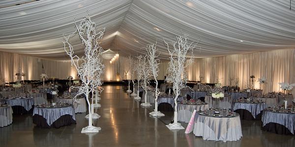 I-Beam Albany Wedding Set #1   1-21-12 (1122 of 37)