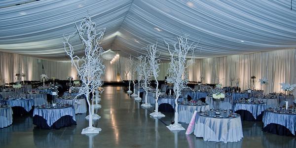 I-Beam Albany Wedding Set #1   1-21-12 (1123 of 37)