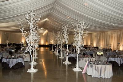 I-Beam Albany Wedding Set #1   1-21-12 (1117 of 37)