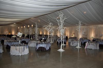 I-Beam Albany Wedding Set #1   1-21-12 (1124 of 37)