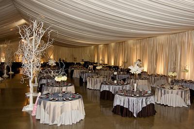 I-Beam Albany Wedding Set #1   1-21-12 (1114 of 37)