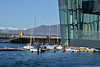 Harpa Harbor - May 2017