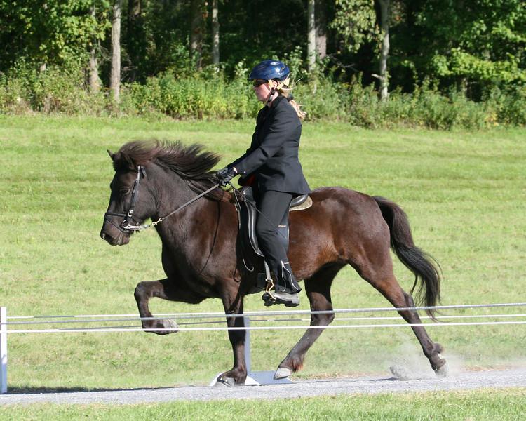 Svarta-Nótt frá Akureyri