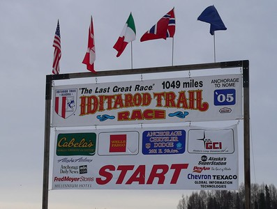 Iditarod 2005 Restart at Willow