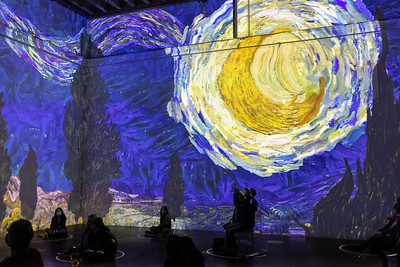Immersion Van Gogh, with Sandy and Nick