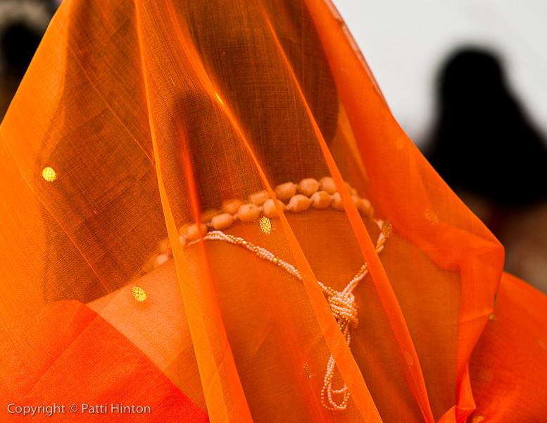 Indiafest-8825