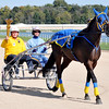 John P. Cleary | The Herald Bulletin<br /> Indiana Bicentennial Torch Relay torchbearer Jimmie Howell is transported around the track at Hoosier Park Racing & Casino by driver/trainer Brooke Nickells and her horse Ideal Choice.