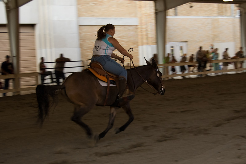 Mule barrel racing at the 2007 Indiana State Fair