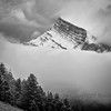 Rundle Mists