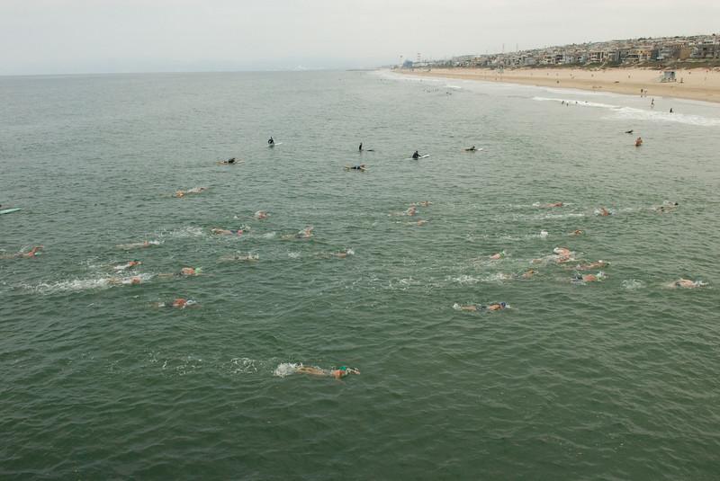 2007 Pier to Pier Swim