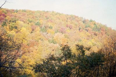 Treman State Park