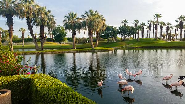 JAFRA Palm Springs Retreat Event Photos