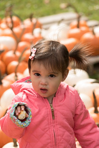 20151017 0153 Jackies Coventry Farm Fall Festival
