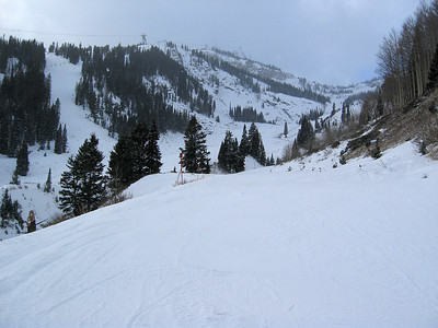 Jackson Hole mountain resort, mid-mountain   (Dec 11, 2006, 03:11pm)