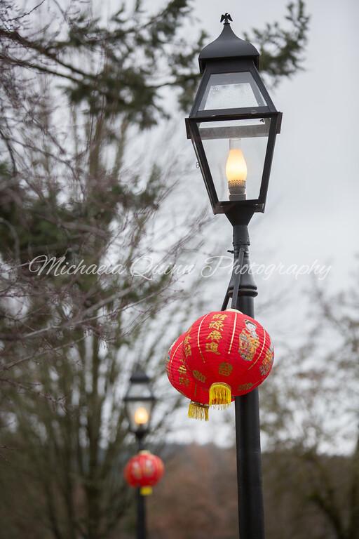 ChineseNewYear-20170218-0001