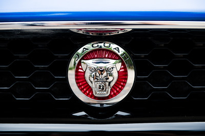 Jaguar Umlauf Unveiling