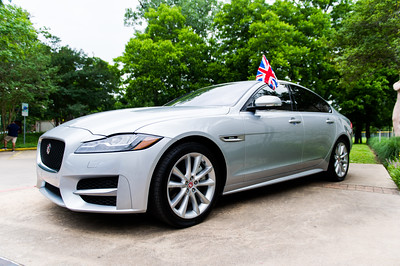 Jaguar-Umlauf-009