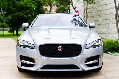 Jaguar-Umlauf-006