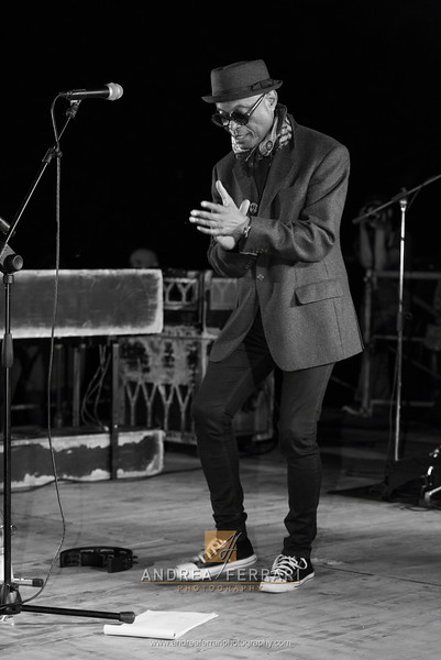 Modena blues festival 2016 - James Thompson Magic Trio - (8)
