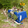 Fairy altar