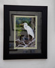 We featured a selection of images..birds, glades scenes, and selected lighthouses...for our black and green matting with black frame combination. Shown here is the Great White Heron hung on the mesh walls of the tent.