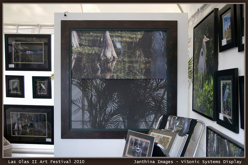 """Las Olas II Art Festival: Janthina Images and  ViSonic Systems collaborate to introduce """"ART FOR WINDOWS""""<br /> <br /> Cypress Egret image applied to a  Lutron motorized black out shade with sheer sunshade in the back..also motorized and controllable."""