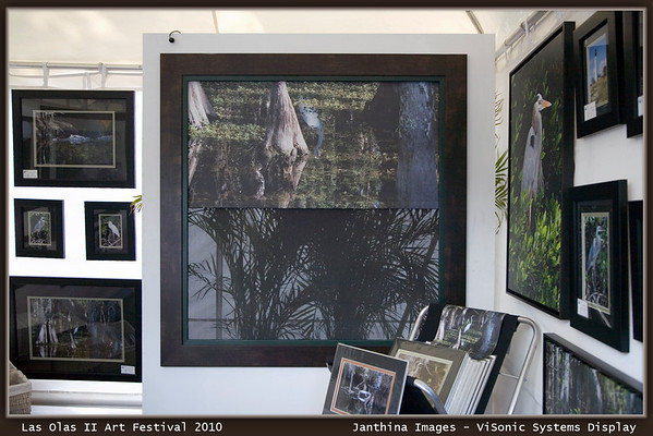 "Las Olas II Art Festival: Janthina Images and  ViSonic Systems collaborate to introduce ""ART FOR WINDOWS""<br /> <br /> Cypress Egret image applied to a  Lutron motorized black out shade with sheer sunshade in the back..also motorized and controllable."