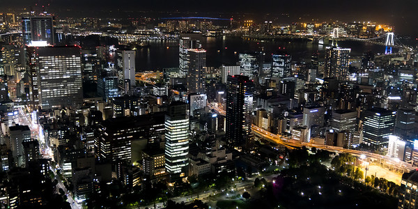 View of Tokyo from from the Tokyo Tower observation platform