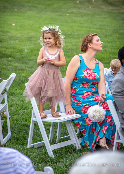 20180722-182923 Jesse and Tristan wedding in Springfield