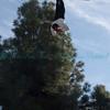 Jim Bentley 182 11-03-09